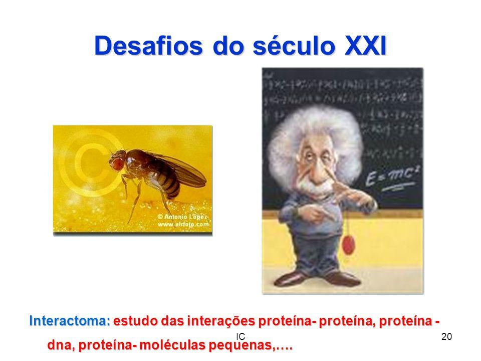 Desafios do século XXI Interactoma: estudo das interações proteína- proteína, proteína - dna, proteína- moléculas pequenas,….