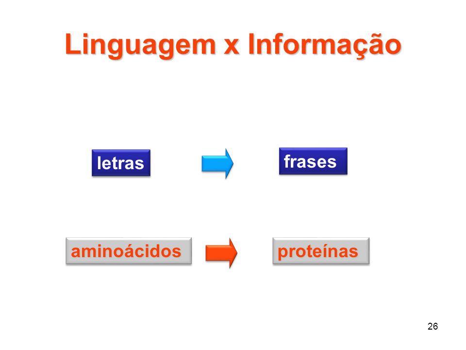 Linguagem x Informação