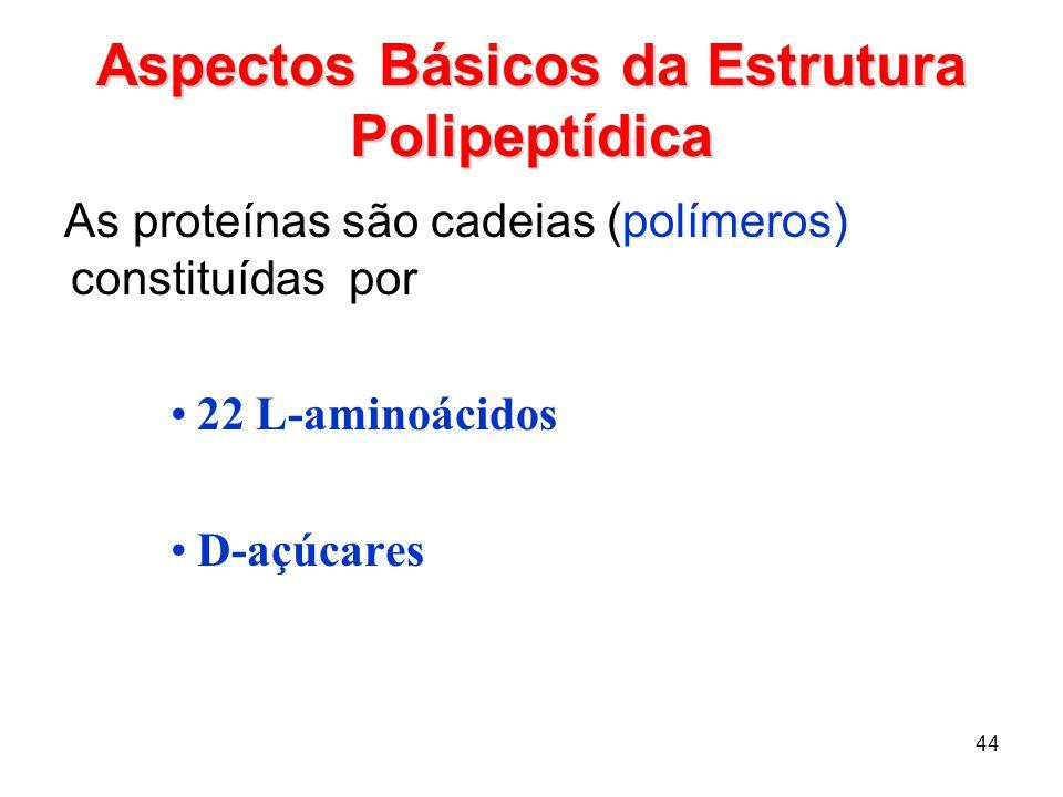 Aspectos Básicos da Estrutura Polipeptídica