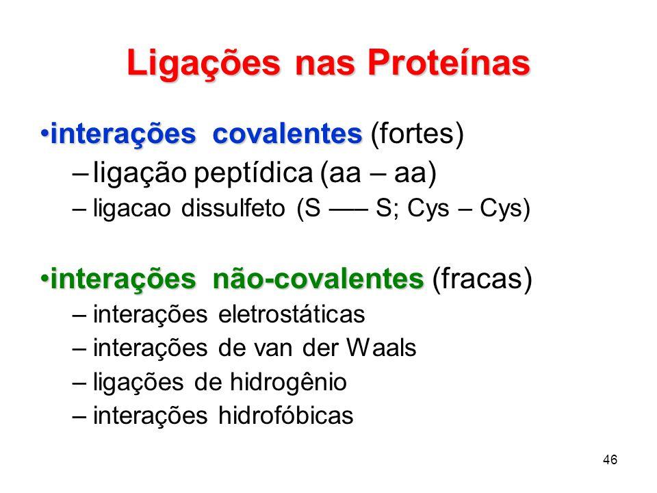 Ligações nas Proteínas