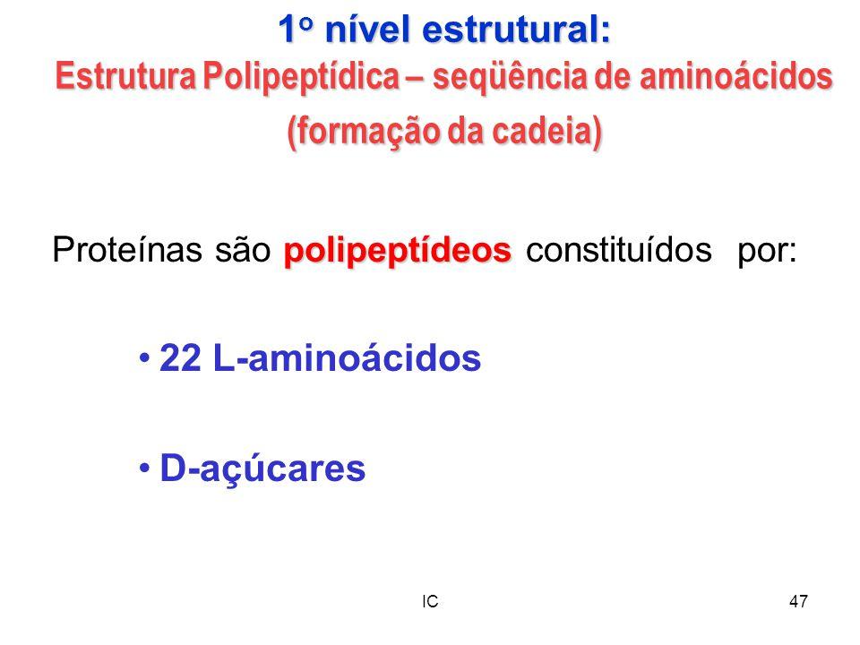 1o nível estrutural: Estrutura Polipeptídica – seqüência de aminoácidos (formação da cadeia)