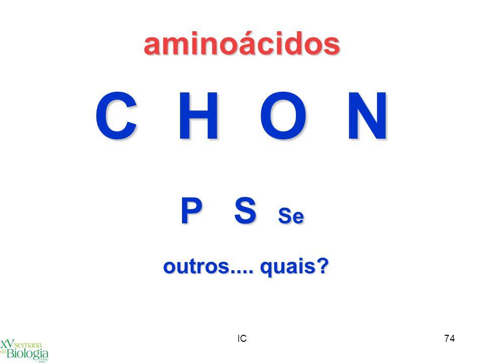 aminoácidos C H O N P S Se outros.... quais IC