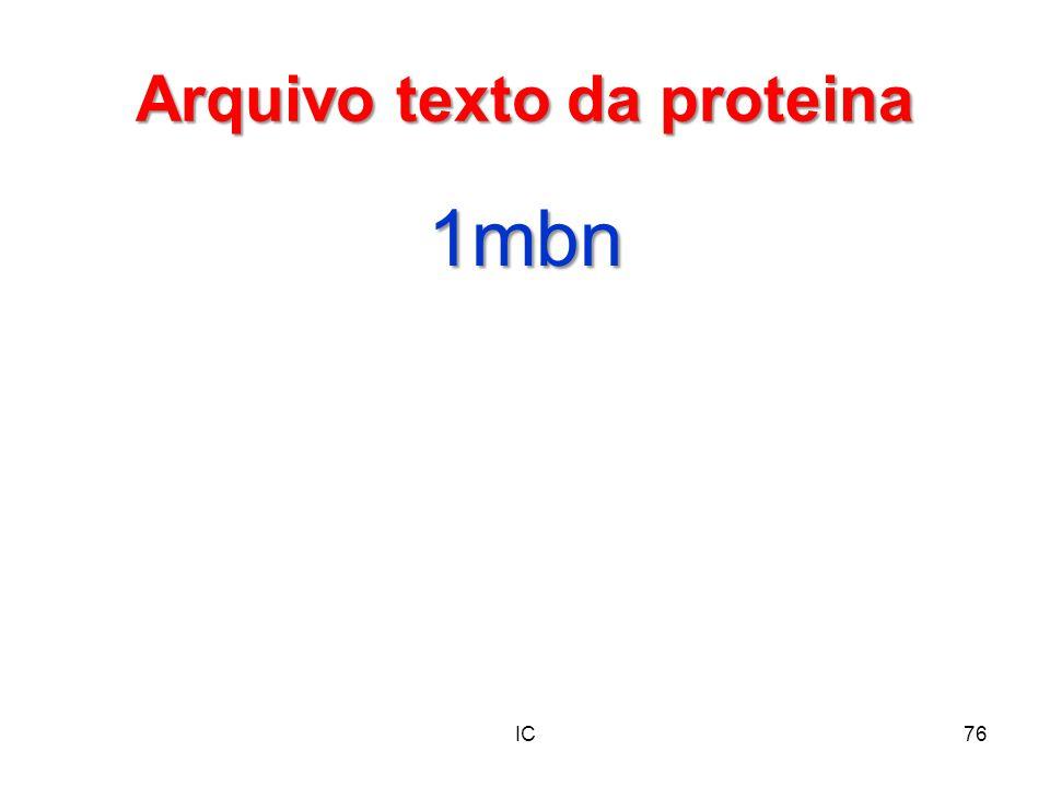 Arquivo texto da proteina
