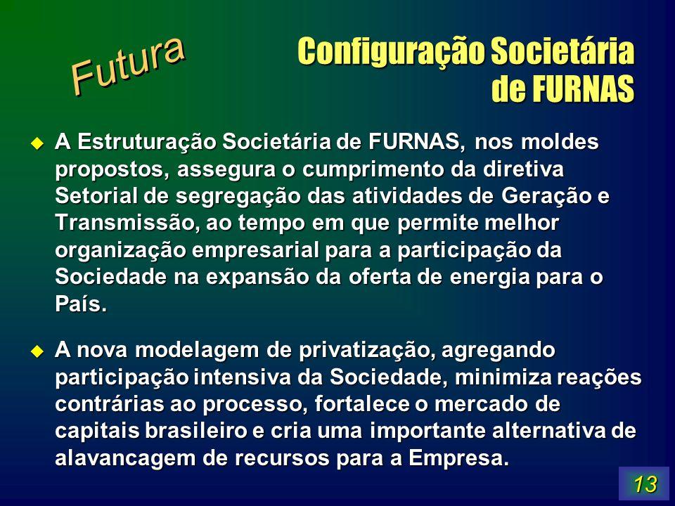 Configuração Societária de FURNAS