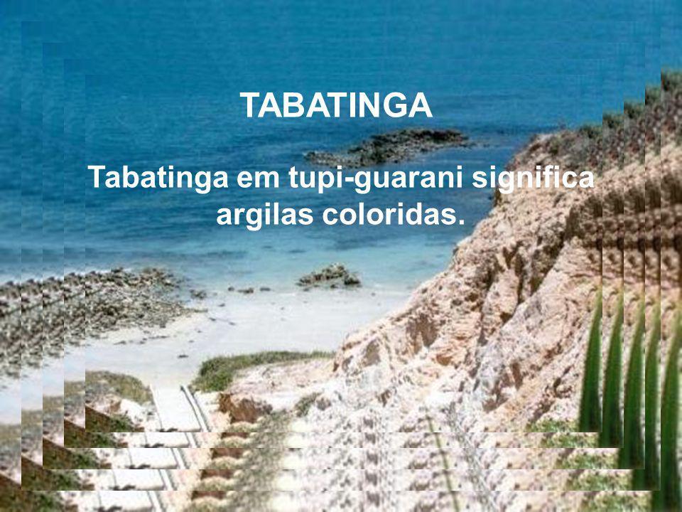 Tabatinga em tupi-guarani significa