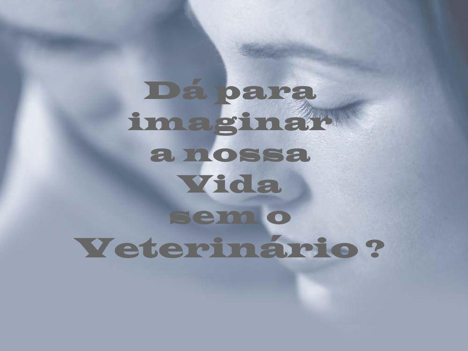 Dá para imaginar a nossa Vida sem o Veterinário
