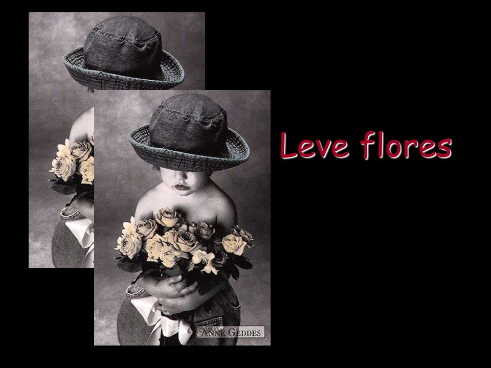 Leve flores