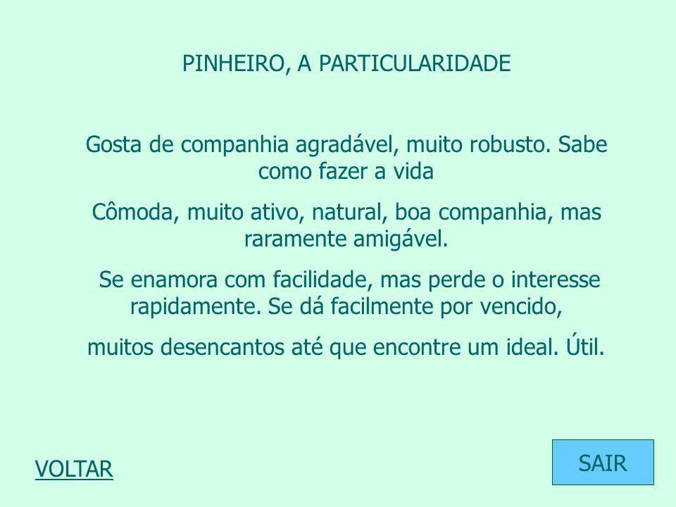 PINHEIRO, A PARTICULARIDADE