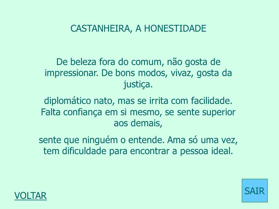 CASTANHEIRA, A HONESTIDADE