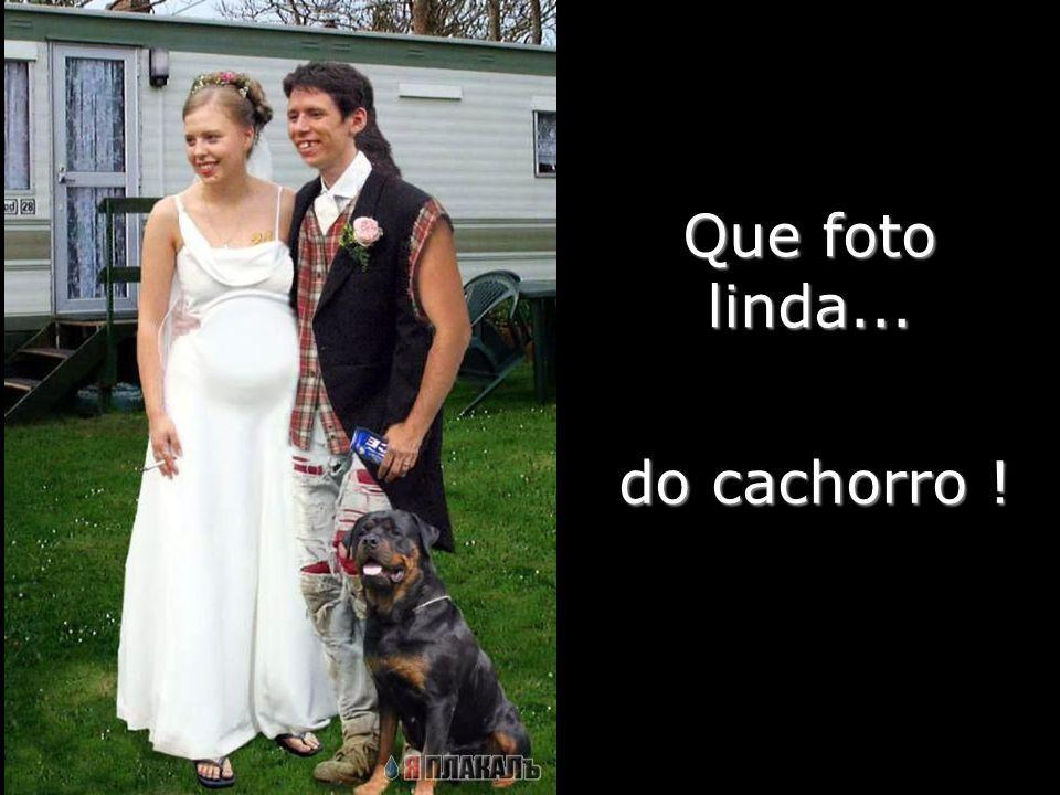 Que foto linda... do cachorro !