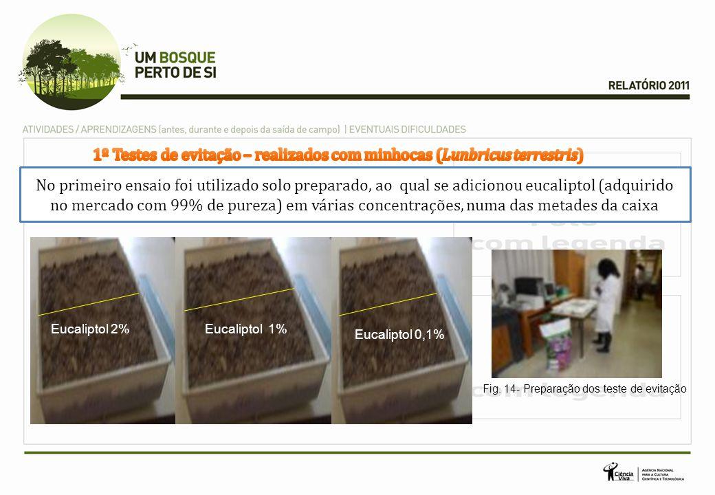 1º Testes de evitação – realizados com minhocas (Lunbricus terrestris)