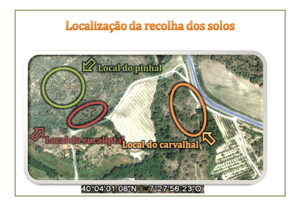 Localização da recolha dos solos