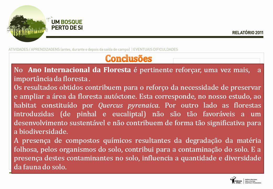 Conclusões No Ano Internacional da Floresta é pertinente reforçar, uma vez mais, a importância da floresta .