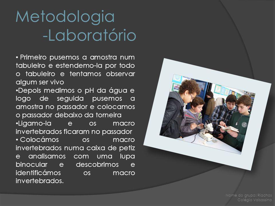 Metodologia -Laboratório