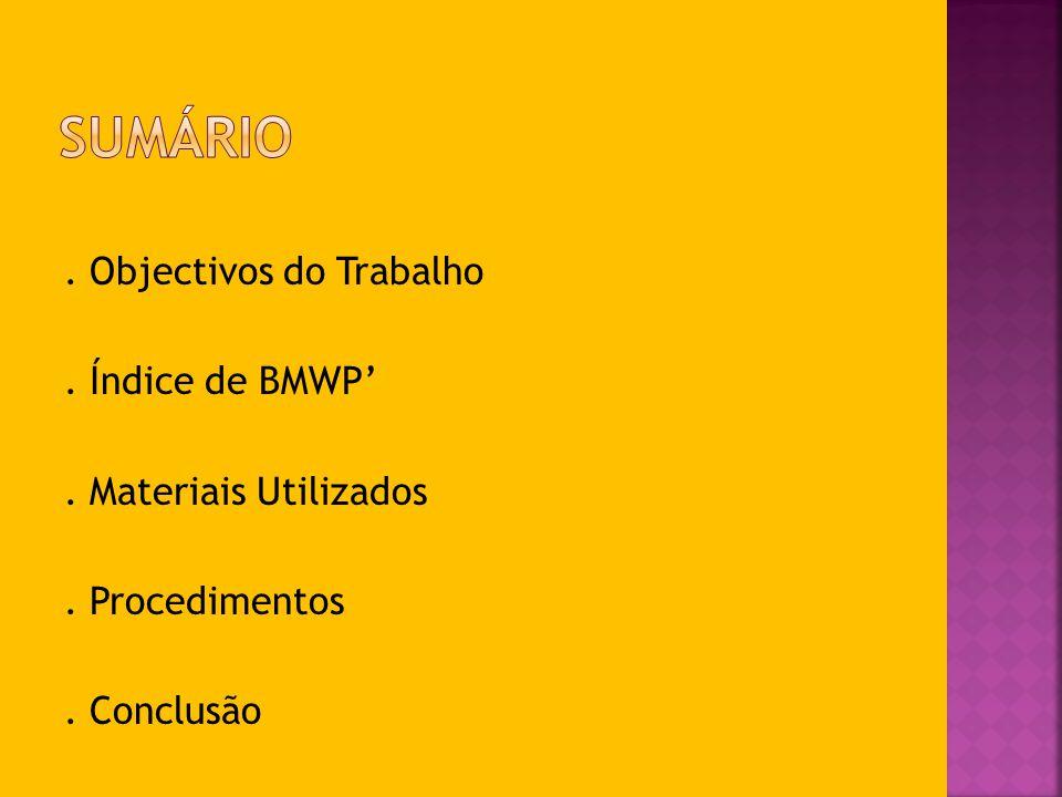 Sumário . Objectivos do Trabalho . Índice de BMWP'