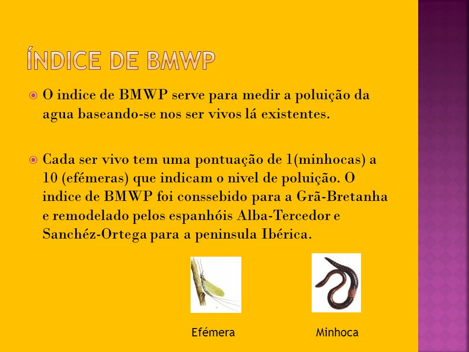 Índice de BMWP O indice de BMWP serve para medir a poluição da agua baseando-se nos ser vivos lá existentes.
