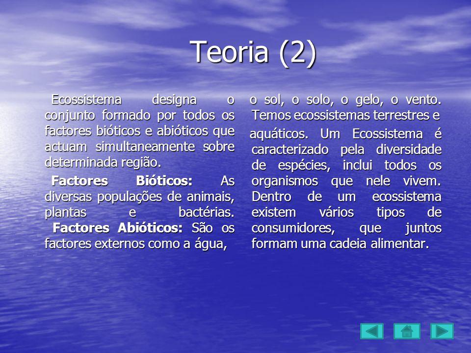Teoria (2)