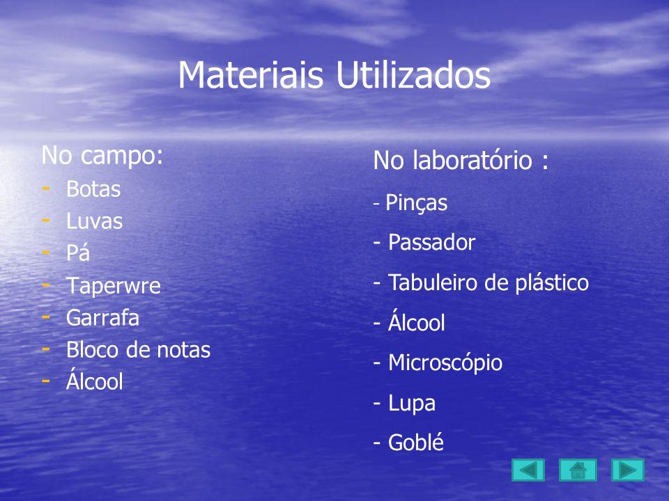 Materiais Utilizados No campo: No laboratório : Botas Luvas Passador