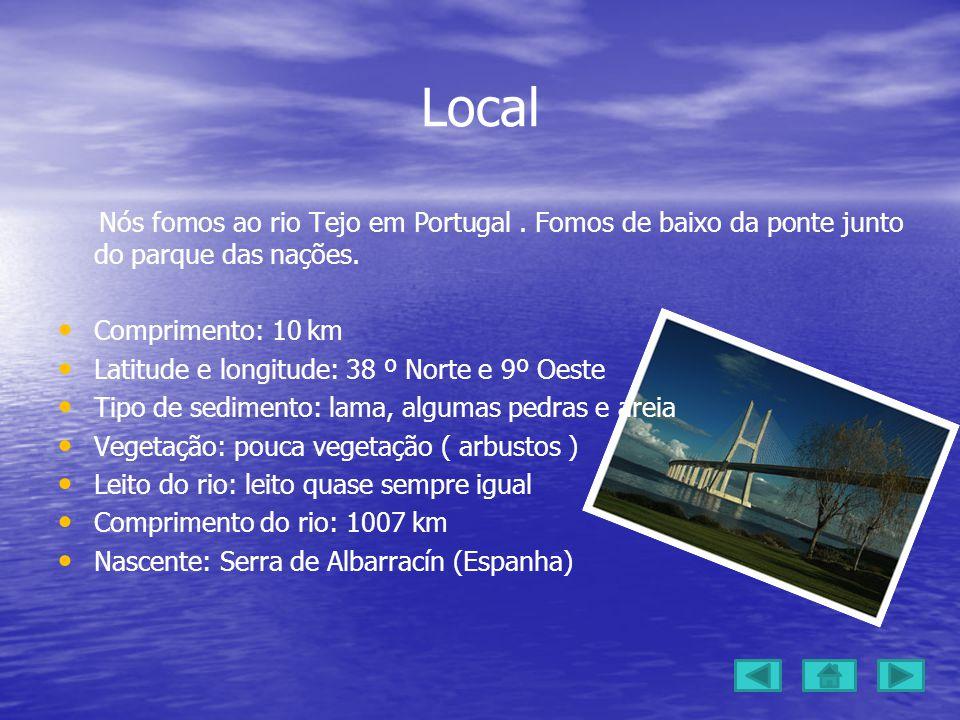 Local Nós fomos ao rio Tejo em Portugal . Fomos de baixo da ponte junto do parque das nações. Comprimento: 10 km.