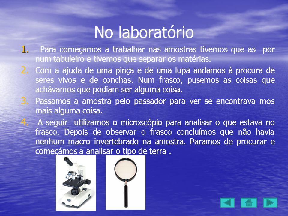 No laboratório Para começamos a trabalhar nas amostras tivemos que as por num tabuleiro e tivemos que separar os matérias.