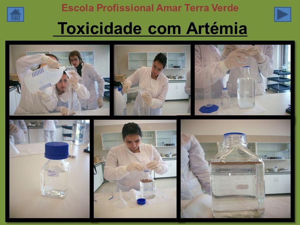 Toxicidade com Artémia
