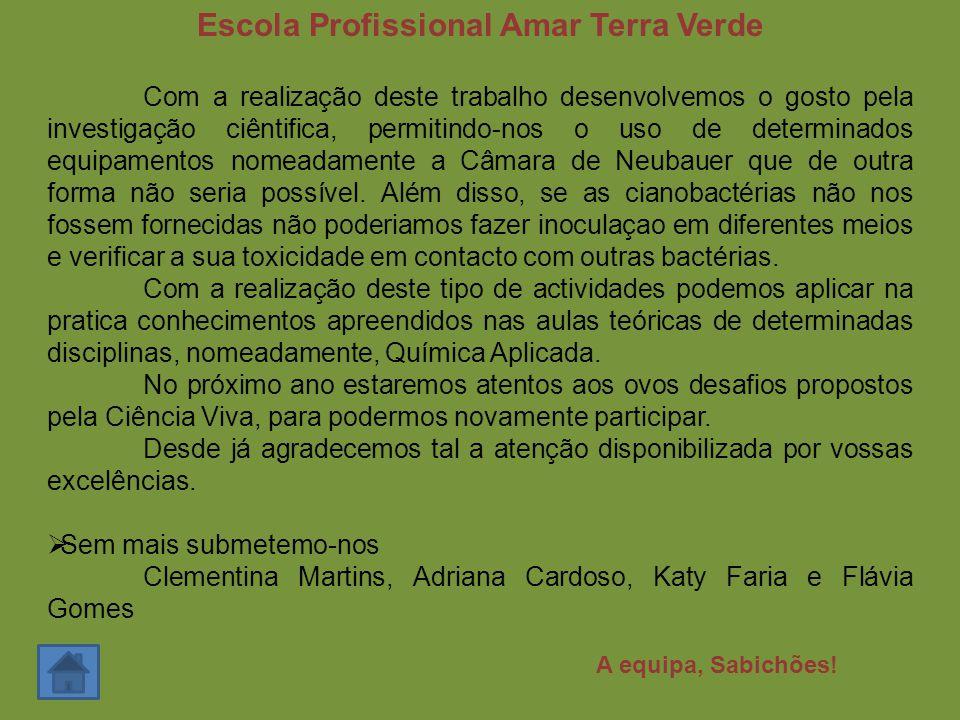 Escola Profissional Amar Terra Verde