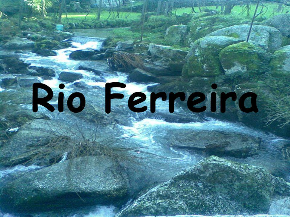 Rio Ferreira