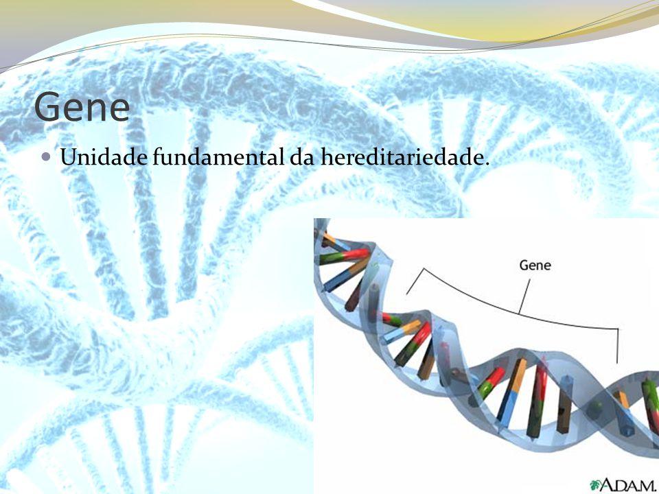 Gene Unidade fundamental da hereditariedade.
