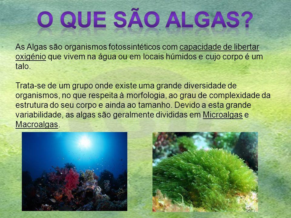 O QUE SÃO ALGAS As Algas são organismos fotossintéticos com capacidade de libertar.