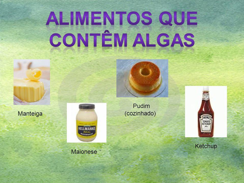alimentos que contêm algas