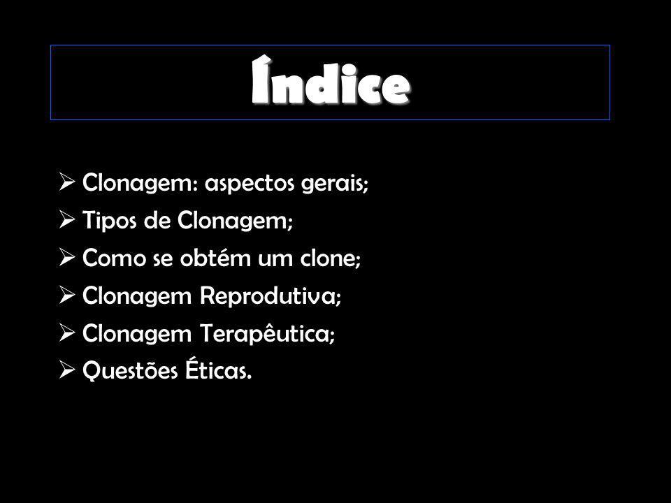 Índice Clonagem: aspectos gerais; Tipos de Clonagem;