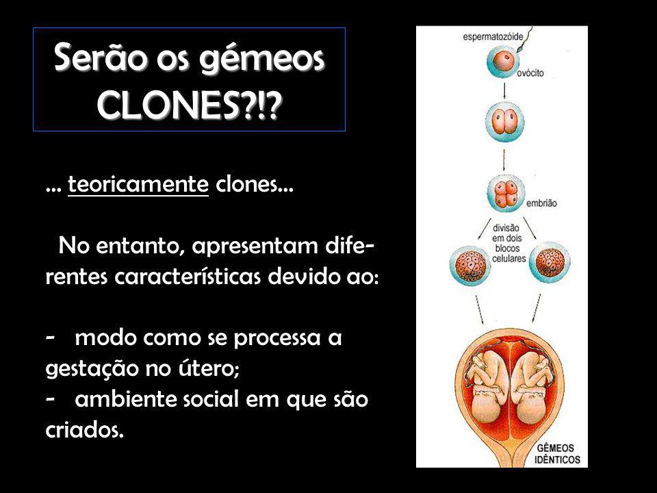 Serão os gémeos CLONES ! ... teoricamente clones...