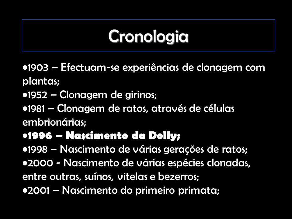 Cronologia 1903 – Efectuam-se experiências de clonagem com plantas;