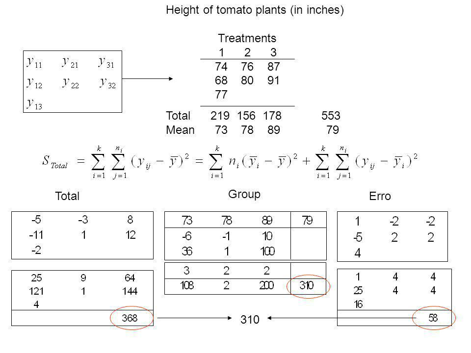 Height of tomato plants (in inches)