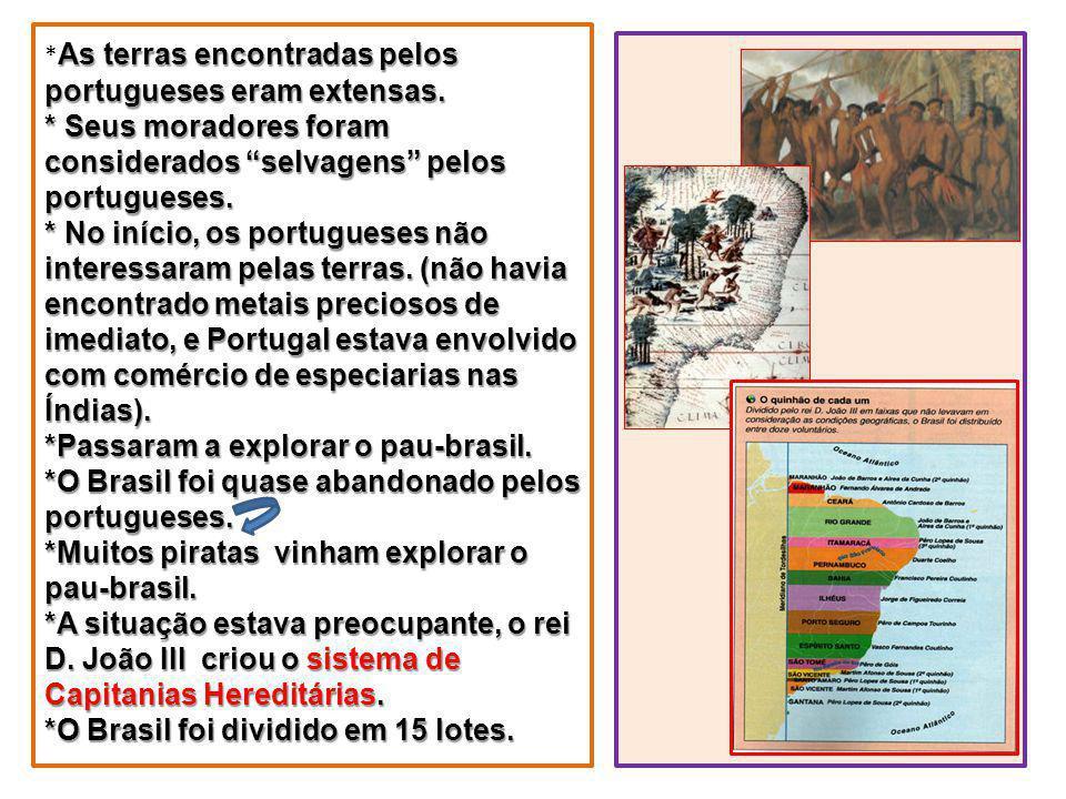 As terras encontradas pelos portugueses eram extensas