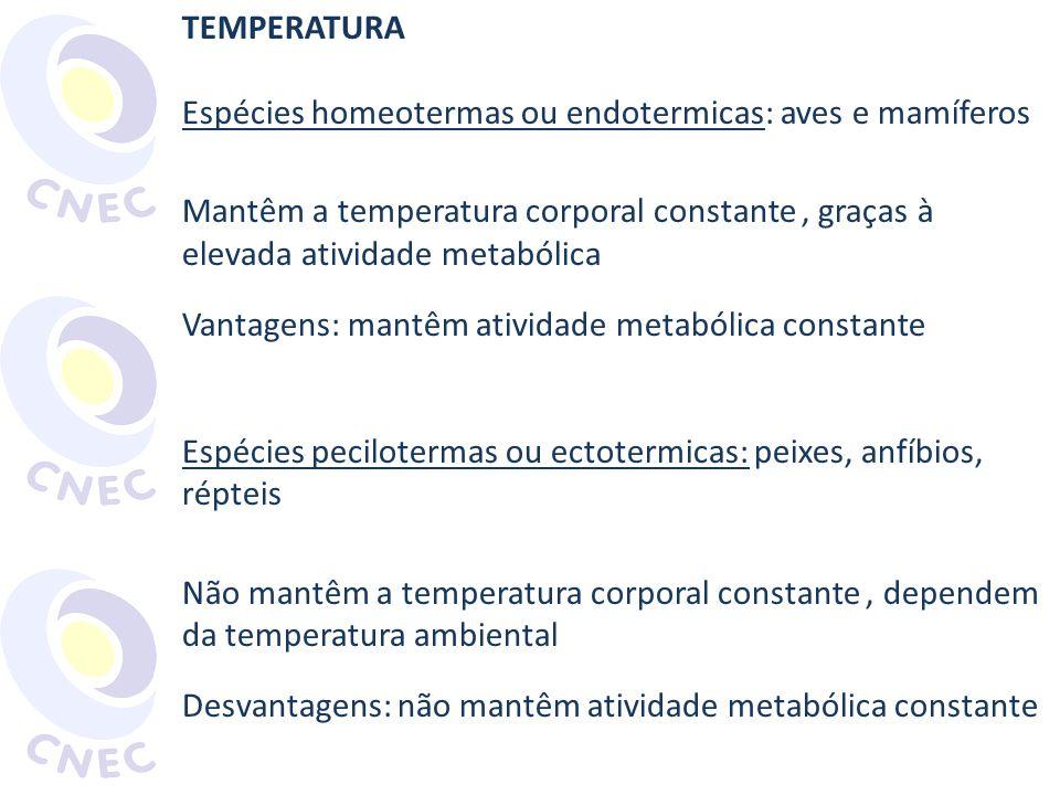 TEMPERATURA Espécies homeotermas ou endotermicas: aves e mamíferos. Mantêm a temperatura corporal constante , graças à elevada atividade metabólica.