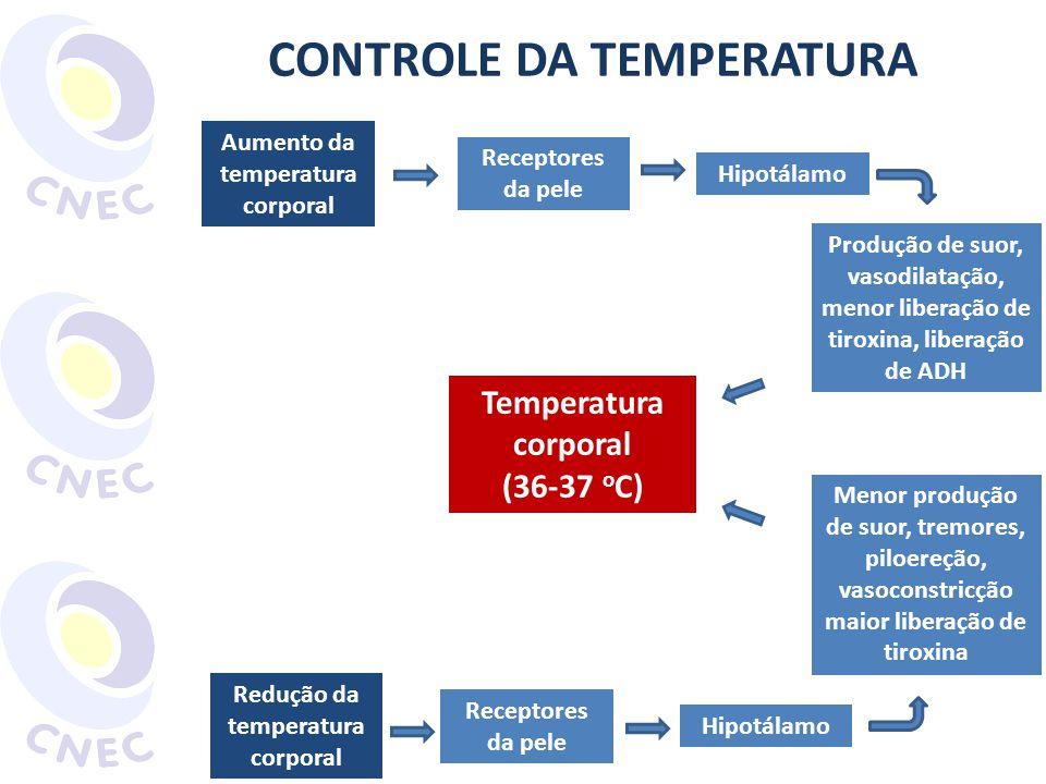 CONTROLE DA TEMPERATURA