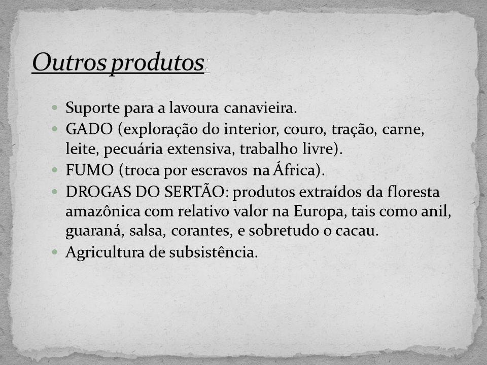 Outros produtos: Suporte para a lavoura canavieira.