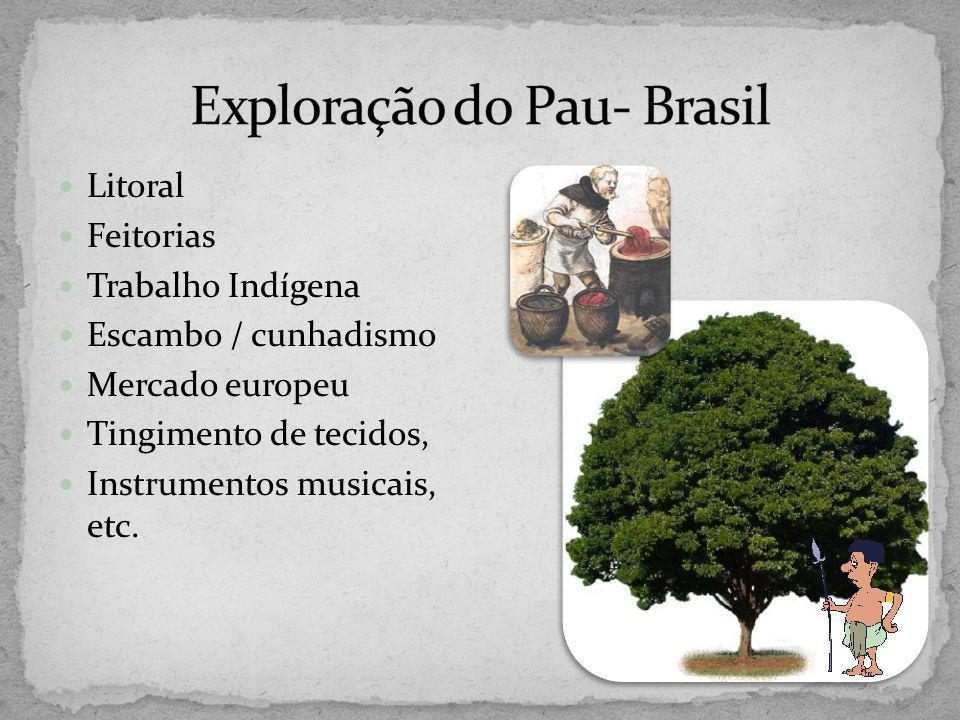 Exploração do Pau- Brasil