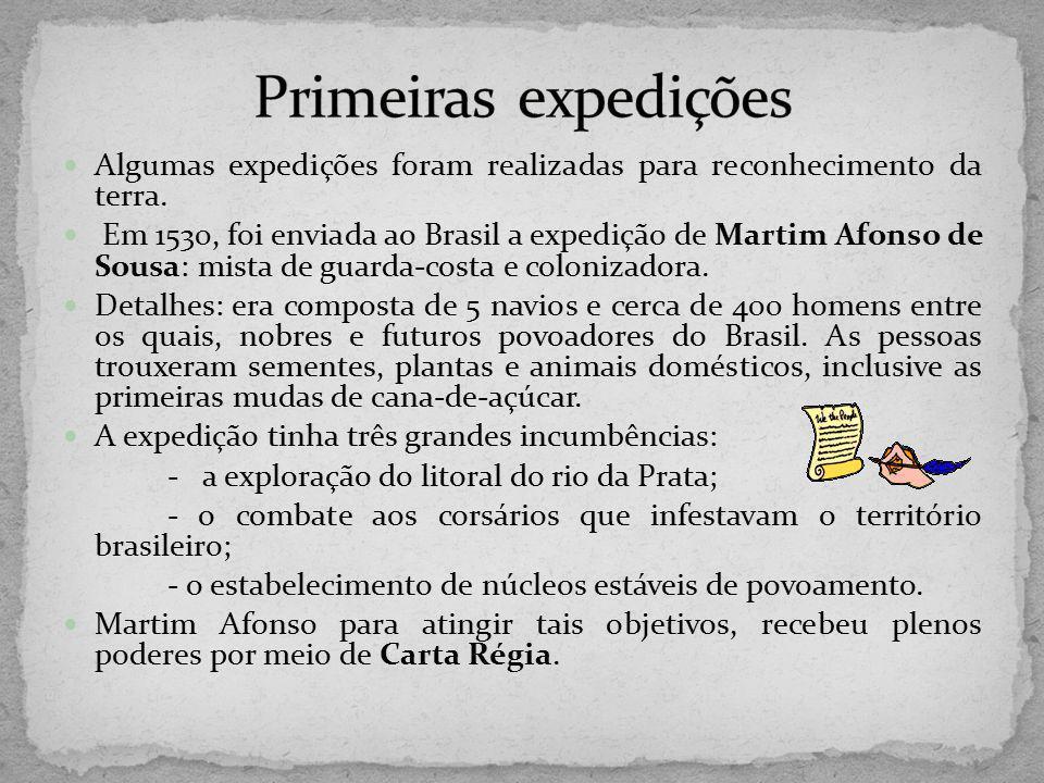 Primeiras expedições Algumas expedições foram realizadas para reconhecimento da terra.