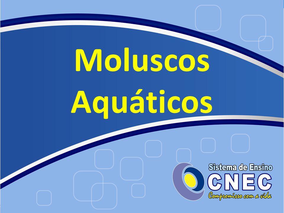 Moluscos Aquáticos