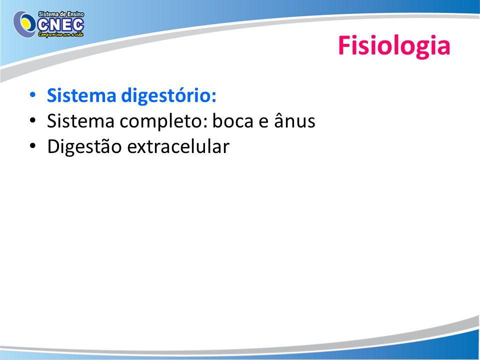 Fisiologia Sistema digestório: Sistema completo: boca e ânus