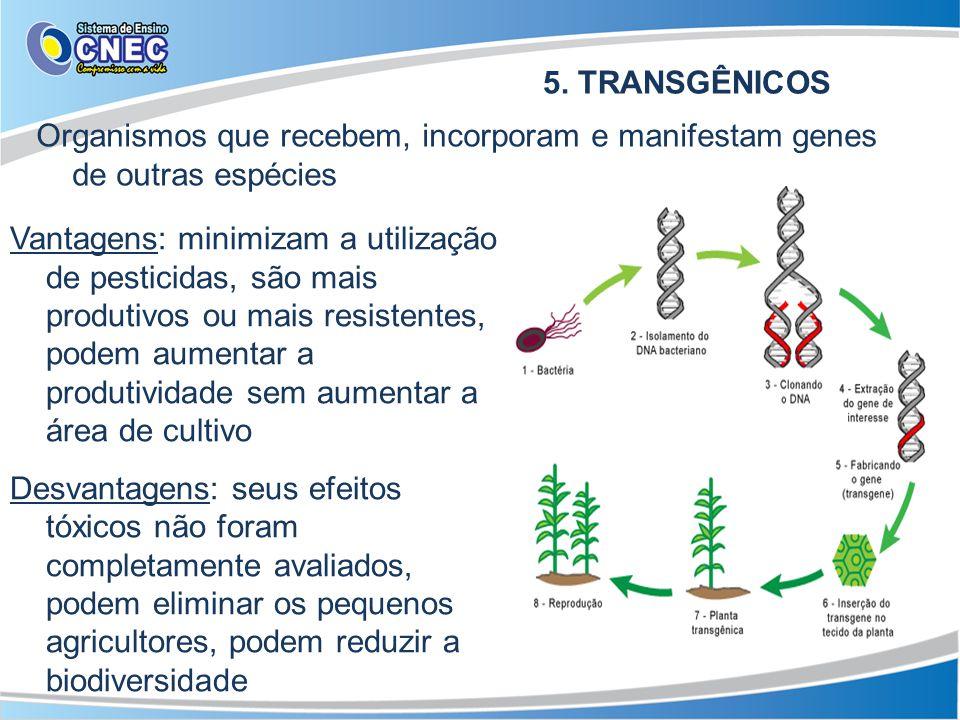 5. TRANSGÊNICOS Organismos que recebem, incorporam e manifestam genes de outras espécies.