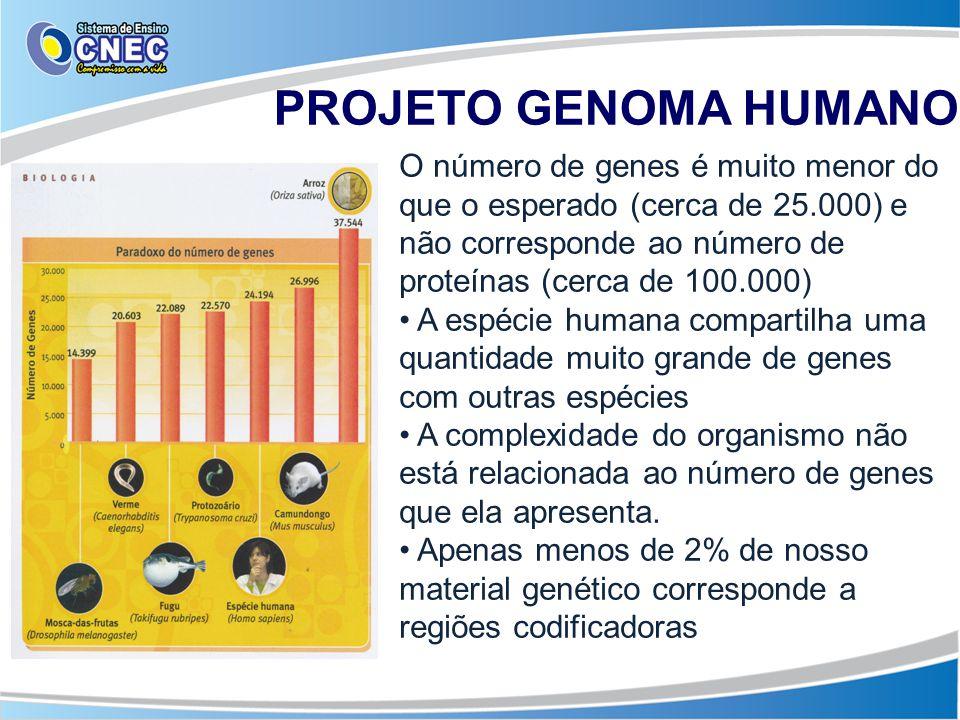 PROJETO GENOMA HUMANO O número de genes é muito menor do que o esperado (cerca de 25.000) e não corresponde ao número de proteínas (cerca de 100.000)