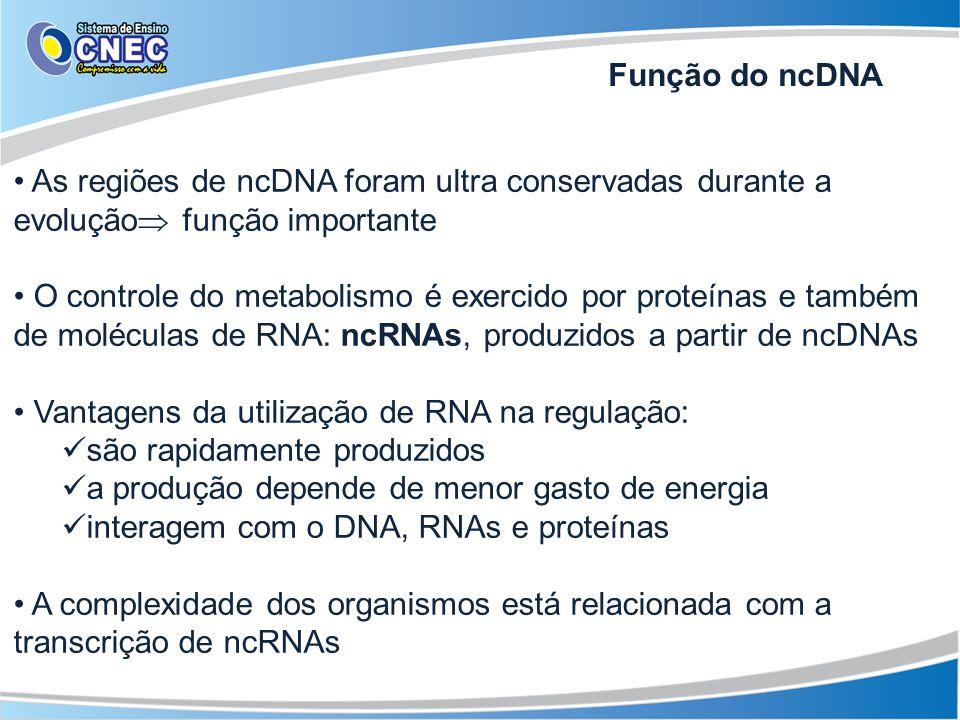 Função do ncDNA As regiões de ncDNA foram ultra conservadas durante a evolução função importante.