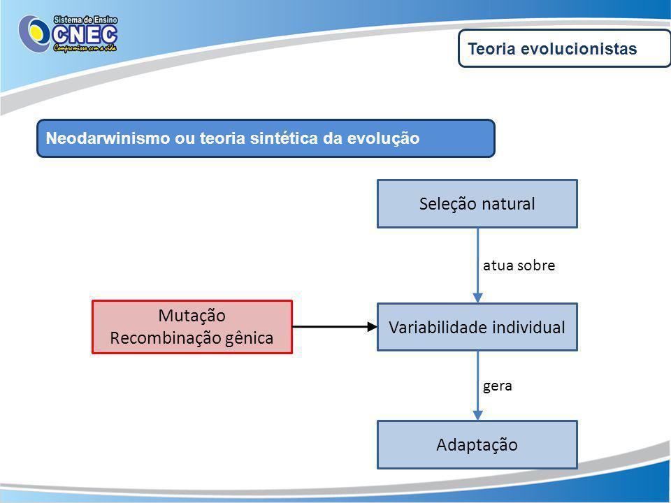 Variabilidade individual