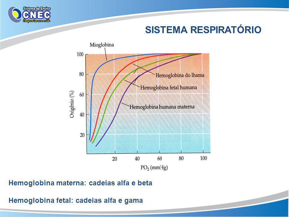 SISTEMA RESPIRATÓRIO Hemoglobina materna: cadeias alfa e beta