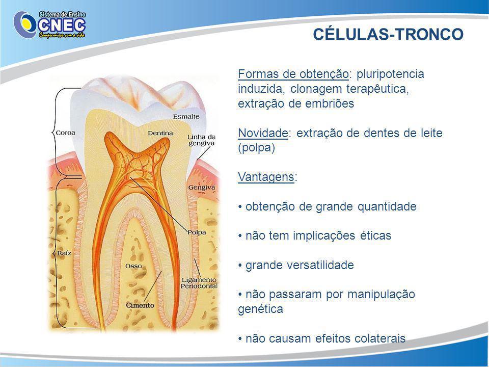CÉLULAS-TRONCO Formas de obtenção: pluripotencia induzida, clonagem terapêutica, extração de embriões.