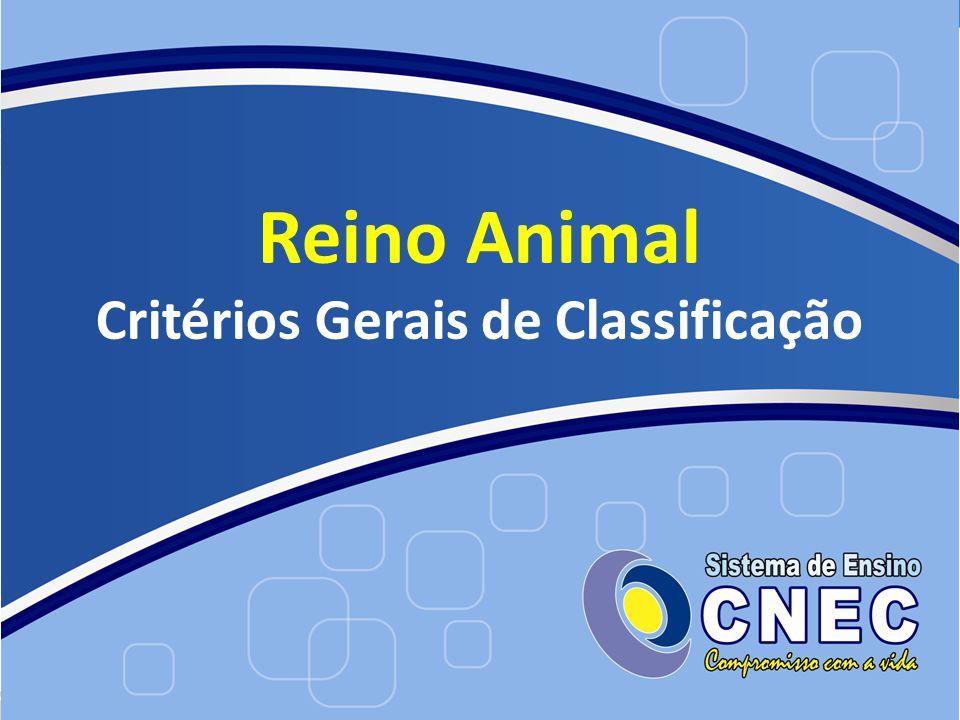 Reino Animal Critérios Gerais de Classificação