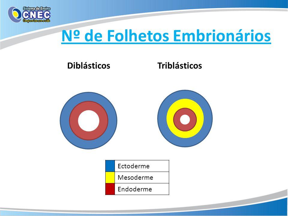Nº de Folhetos Embrionários